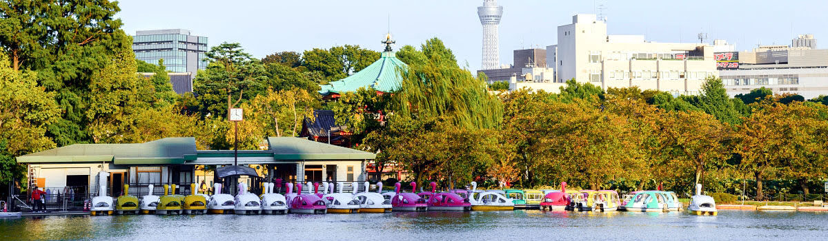 Tokyo Attractions: 5 Things to Do During a Vacation in Japan