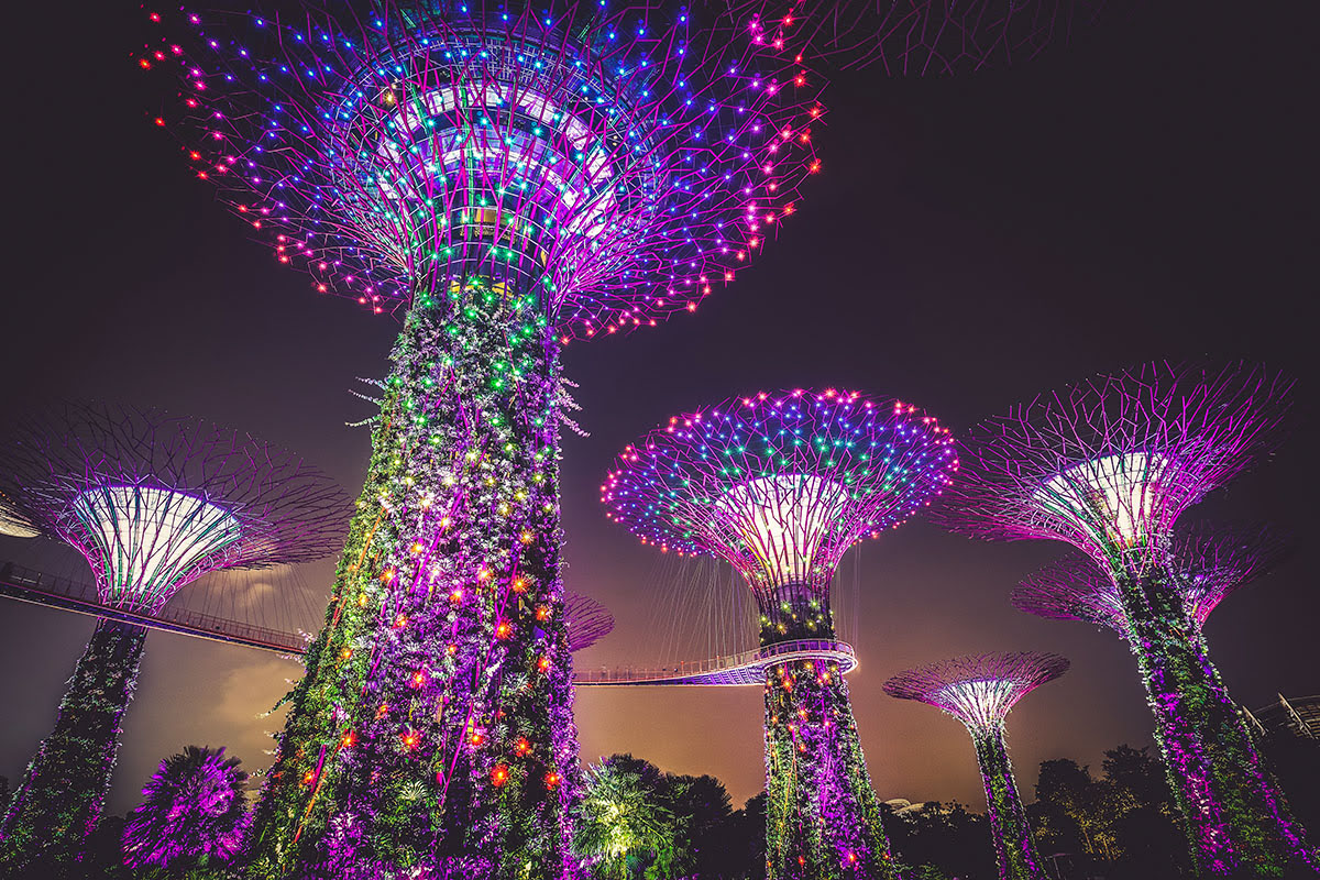 Gardens by the Bay_Flower Dome_Supertree Grove_Singapore