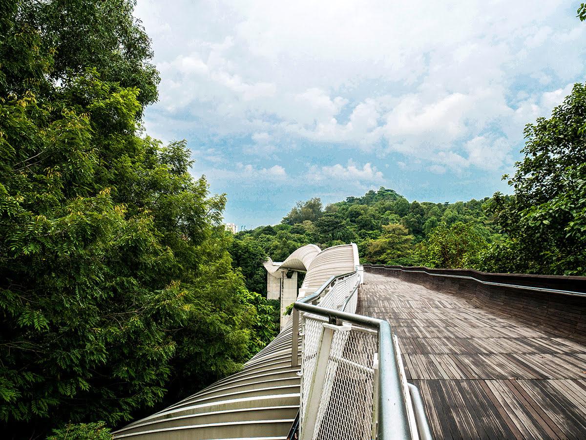 Henderson Waves_Southern Ridges_Singapore