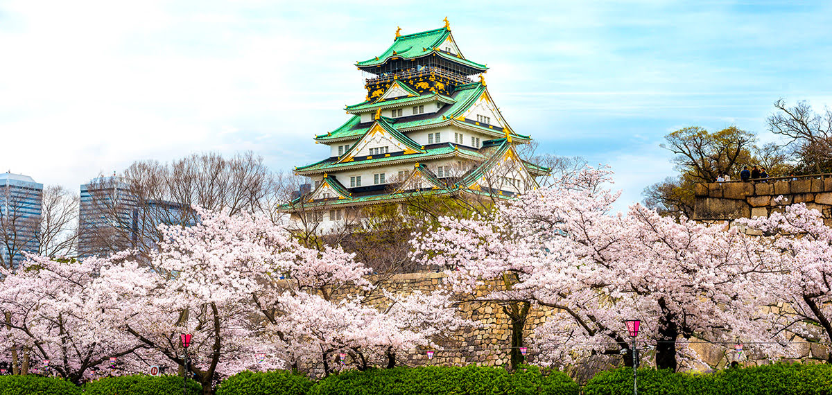 Spring cherry blossoms_Nishinomaru Park_Osaka Castle Park_Osaka_Japan_best time to visit Osaka