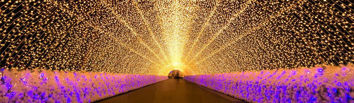 Winter Illuminations: 7 Magical Christmas & Holiday Light Displays