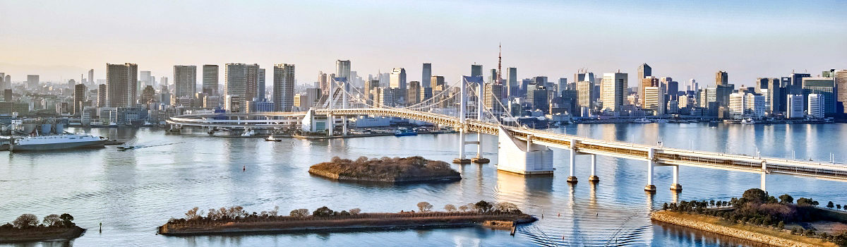 Things to Do in Odaiba: Top Tokyo Attractions & Activities