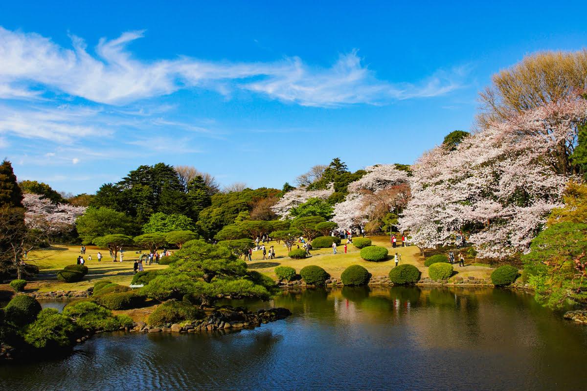 เที่ยวโตเกียว : 10 ที่เที่ยวในโตเกียวที่ต้องลองไปสักครั้ง