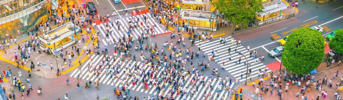 도쿄 지역별 여행 가이드: 지역별로 모아 살펴보는 도쿄의 관광 명소