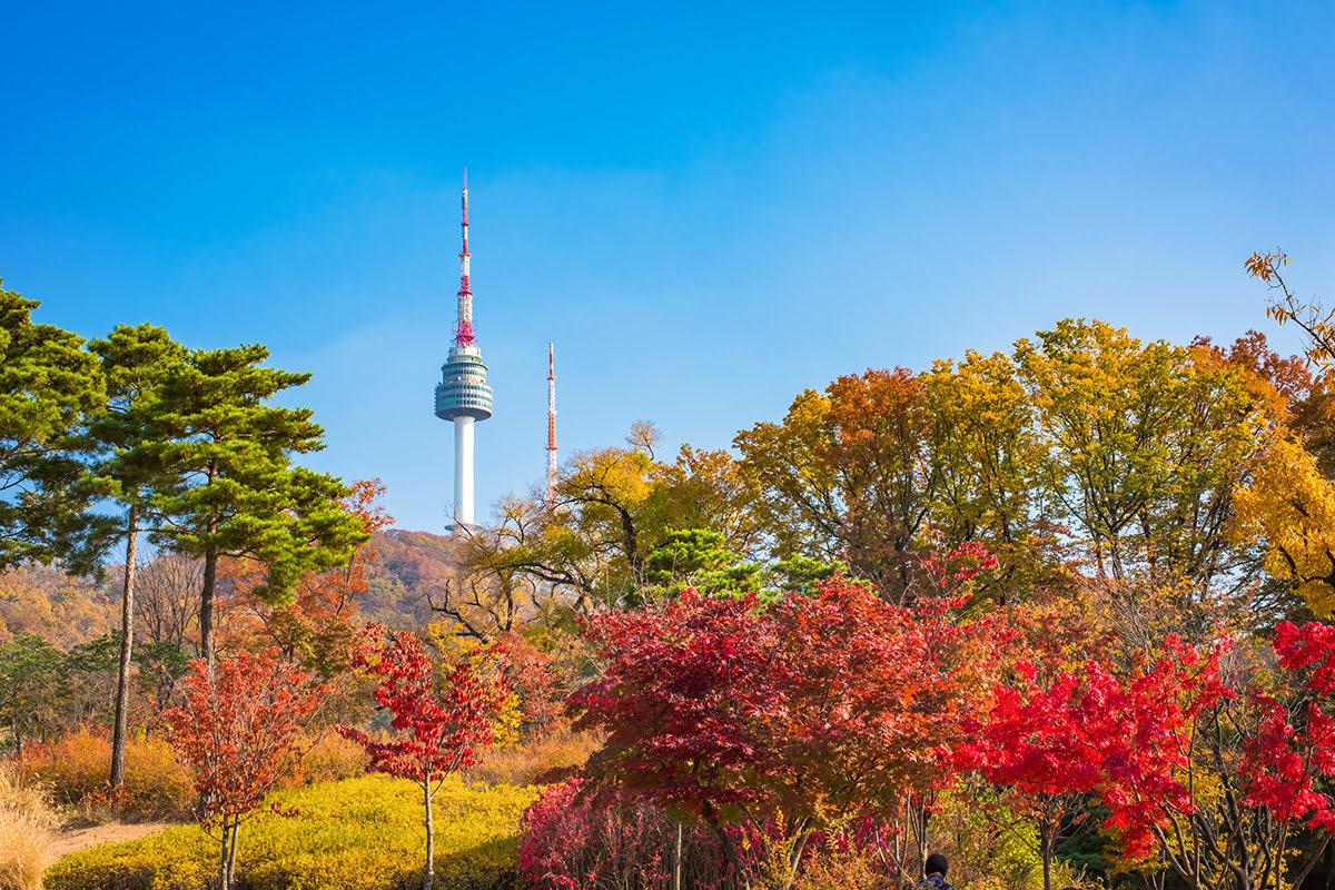 Hasil gambar untuk N Seoul Tower autumn